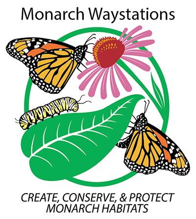 Superieur Monarch Watch